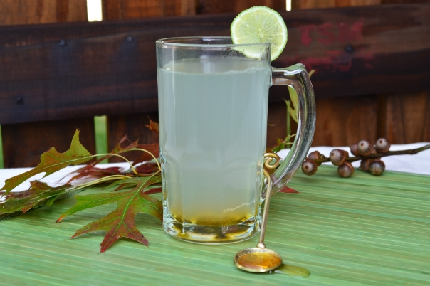 Ginger, lemon, honey tea remedy for flu and colds